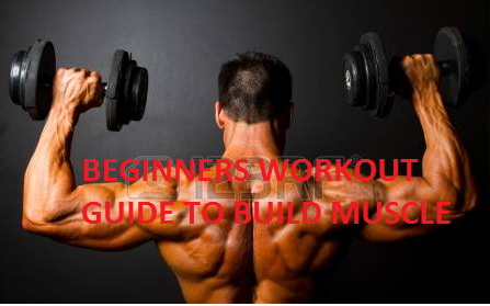Beginner's Workout Guide For Busy People To Build Muscle